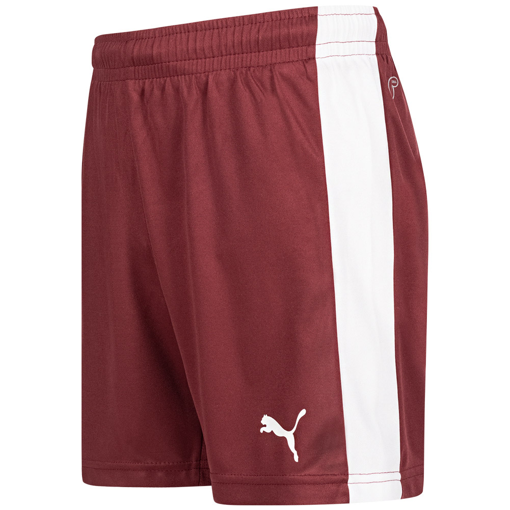 PUMA Velize Pitch Jungen Kinder Trainings Sport Shorts Hose