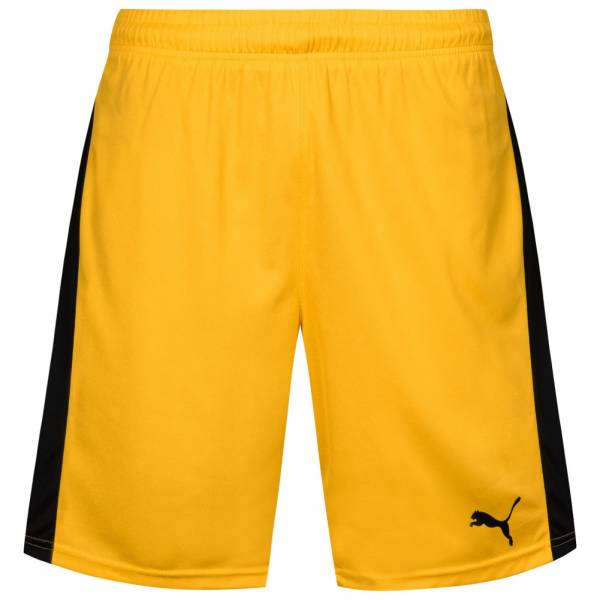 PUMA Pitch Sports Shorts with inner lining 702075-07