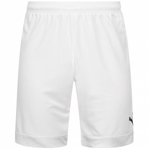 PUMA Cup Herren Shorts 704068-04