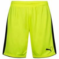 PUMA Tournament Herren Sport Shorts 702196-53