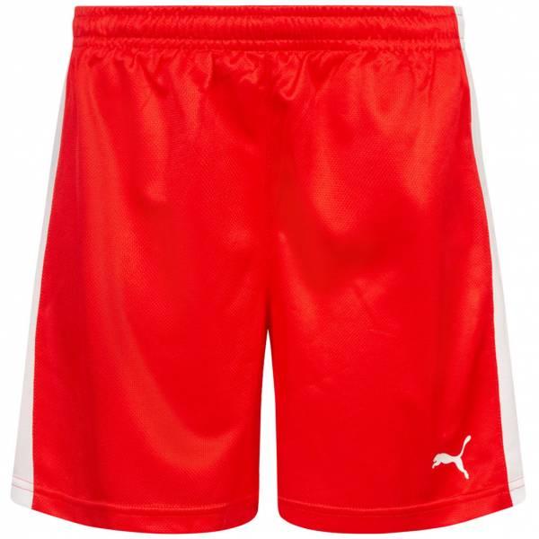 DHF Dänemark PUMA Herren Handball Shorts 750673-01