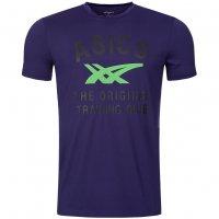 Asics Performance Stripe Tee Herren Sport T-Shirts 113188-0245 violett