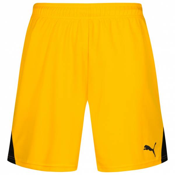 PUMA Team Herren Trainings Shorts 701275-07