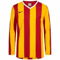 Nike Stripe Kids Long-sleeved Jersey 217255-650