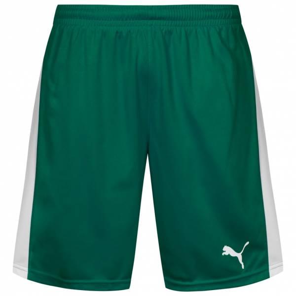 PUMA Pitch Herren Sport Shorts 702072-05