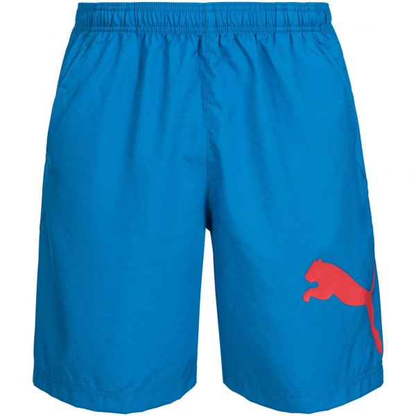PUMA Herren Essential Dry Branded Woven Shorts 512725-03