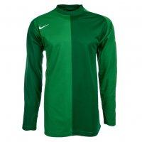 Nike Park Torwarttrikot 119823-377 grün
