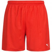 PUMA Vencida Herren Shorts 700789-01