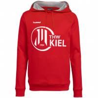 THW Kiel hummel Herren Hoodie 207673-3062