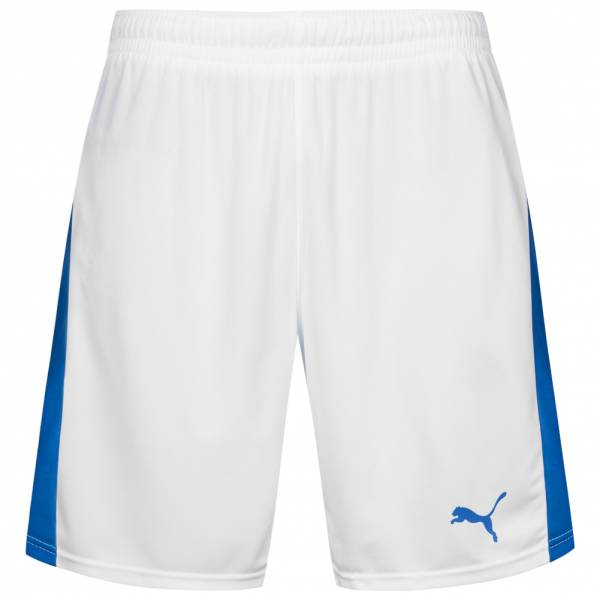 PUMA Pitch Sport Shorts mit Innenslip 702075-13