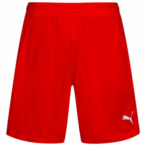 PUMA PowerCat 1.10 Handball Shorts 700873-01