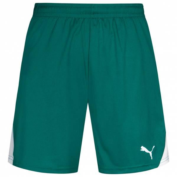 PUMA PowerCat 5.10 Shorts mit Innenslip 700763-05