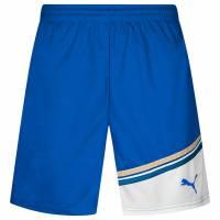 PUMA King Herren Fußball Shorts mit Innenhose 700999-02