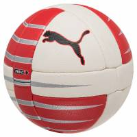 PUMA PowerCat 3.10 Ball Handball 081506-01