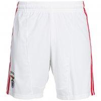 Benfica Lissabon adidas Heim Shorts Herren X23810