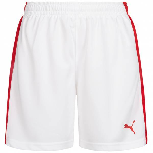 DHF Dänemark PUMA Damen Handball Shorts 750674-12