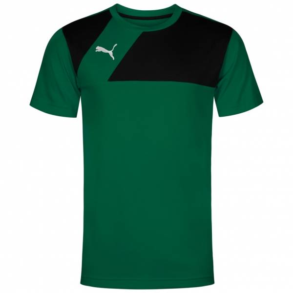 PUMA Esquadra Leisure Herren Trainings T-Shirt 654384-28