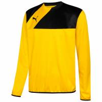 PUMA Esquadra Sweat Men Training Sweatshirt 654380-07