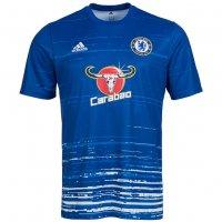 FC Chelsea London adidas Herren Pre-Match Trikot AX7012