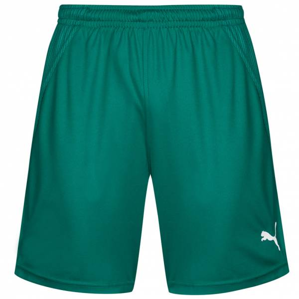 PUMA PowerCat 1.10 Handball Shorts 700873-05
