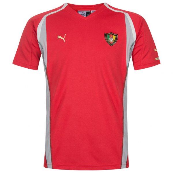 Kamerun PUMA Herren Trainings Trikot 730842-02