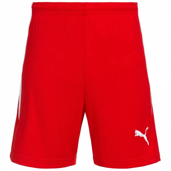 PUMA V-Konstrukt Herren Sport Shorts 700387-03