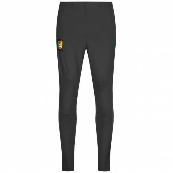 Cameroon PUMA Men Tracksuit Pants 752359-02