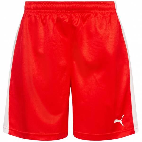 DHF Dänemark PUMA Damen Handball Shorts 750674-01