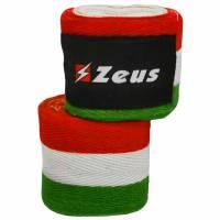Zeus Venda de boxeo Italia