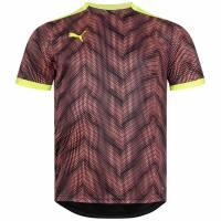 PUMA ftblNXT Graphic Shirt Herren Trikot 657007-06