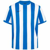 Nike Herren Inter Stripe II Trikot 361112-463