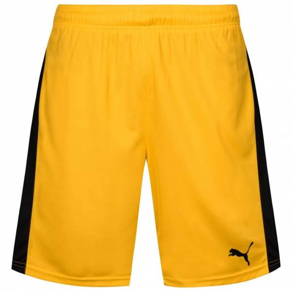 PUMA Pitch Herren Sport Shorts 702072-07