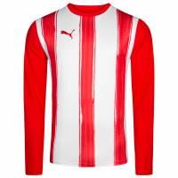 PUMA Striped Longsleeve Trainings Shirt 700770-01