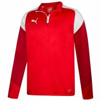 PUMA Esito 4 Herren 1/4 Zip Trainings Sweatshirt 655220-01