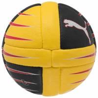 PUMA PowerCat 3.10 Ball Handball 081506-02