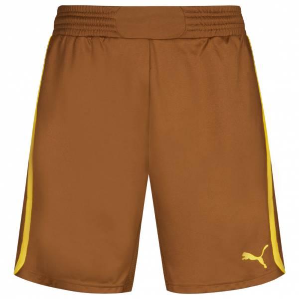 PUMA PowerCat 1.12 Herren Shorts 701202-29