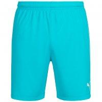 PUMA Velize Herren Shorts 701895-53