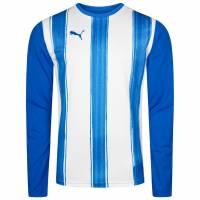 PUMA Striped Longsleeve Trainings Shirt 700770-02