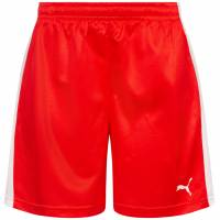 DHF Dänemark PUMA Damen Handball Shorts 750674-01