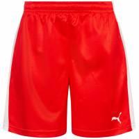 DHF Denmark PUMA Women Handball Shorts 750674-01