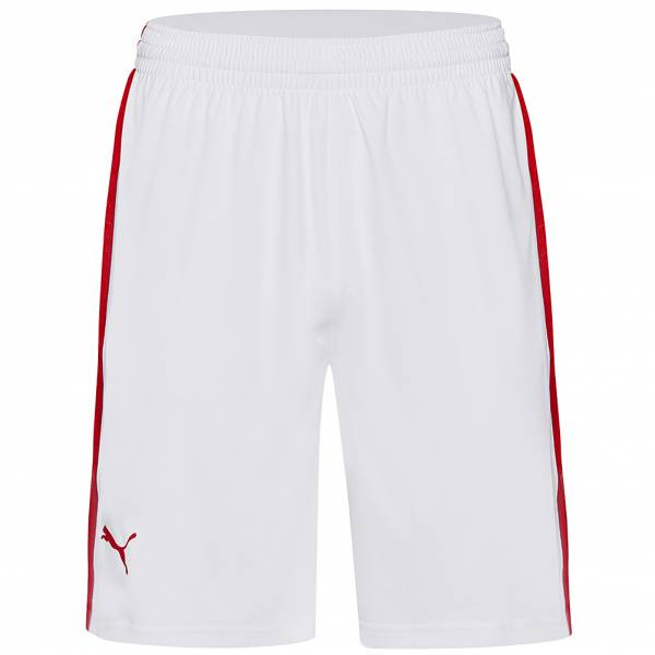 PUMA Herren Basketball Shorts 582459-02