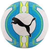 PUMA evoPOWER 6.3 Trainer Fußball 082563-01