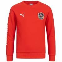 Österreich PUMA Kinder Crew Sweatshirt 750561-01