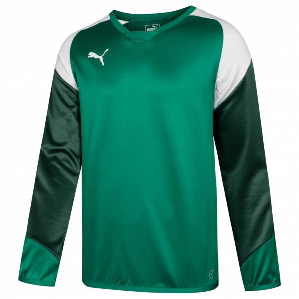 PUMA Esito 4 Herren Trainings Sweatshirt 655222-05