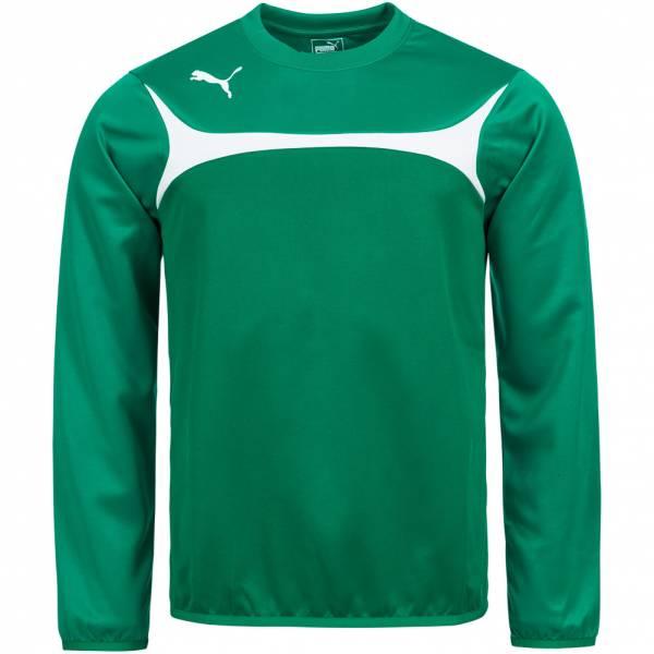 PUMA Esito 3 Herren Training Sweatshirt 653967-05