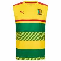 Kamerun PUMA Herren Trainings Tank Top 749040-01