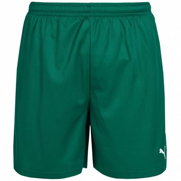 PUMA Vencida Shorts 700789-05