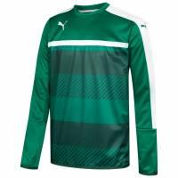 PUMA Veloce Sweat Herren Trainings Sweatshirt 654639-05