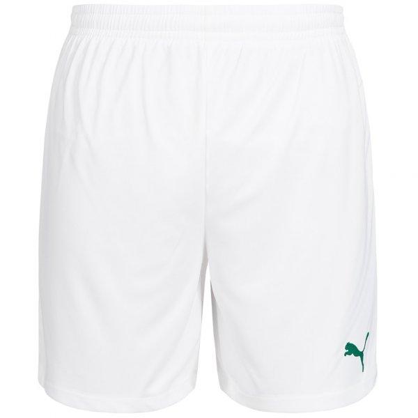 PUMA Velize Herren Shorts 701895-51